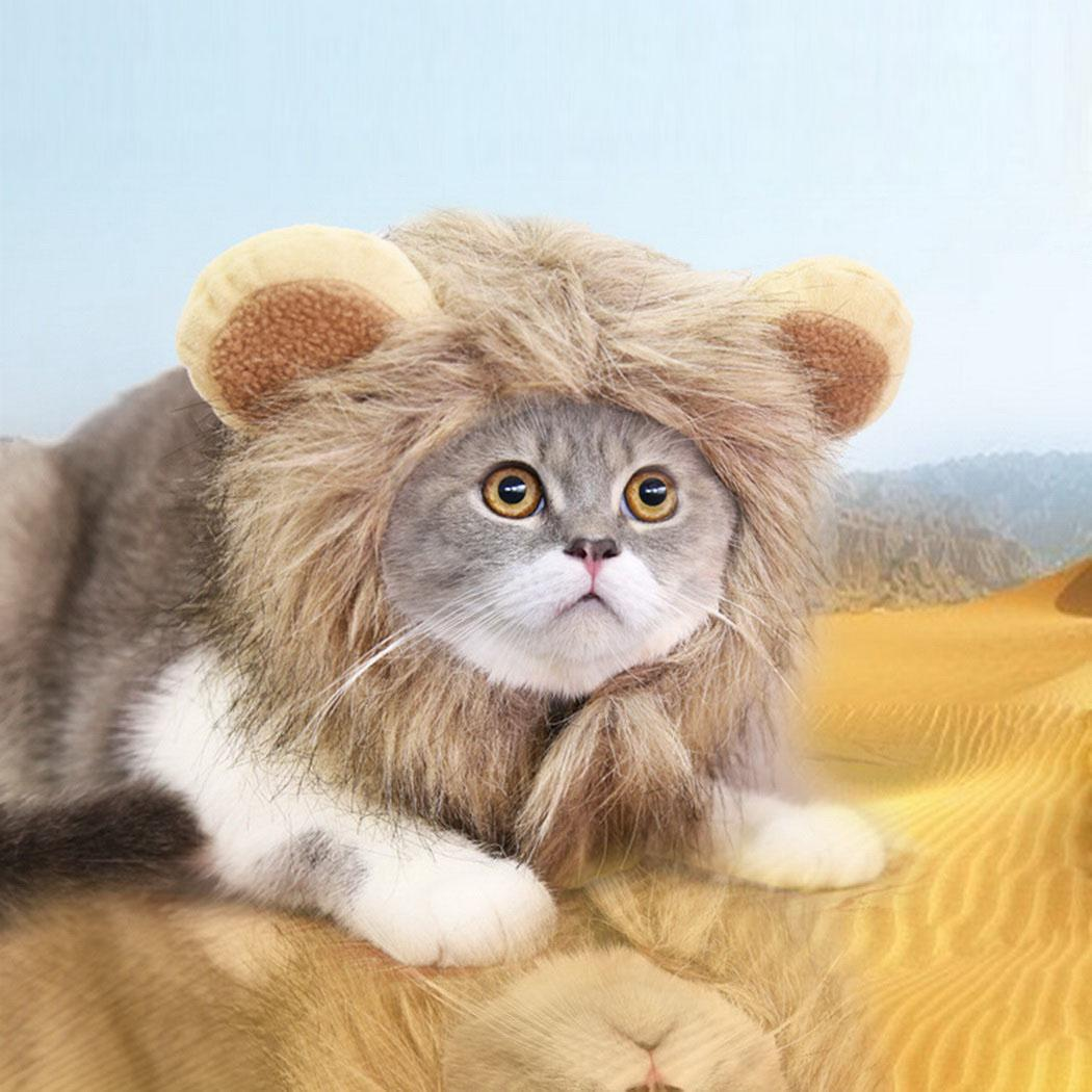 Details about Funny Lion\u0027s Head Shaped Cute Cat Hat Pet Halloween Dress Up  Costume OK